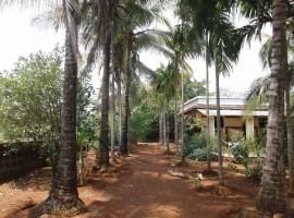 Farm House In Devdhamapur, Tal Sangmeshwar, Dist Ratnagiri, Konkan 8 Guntha