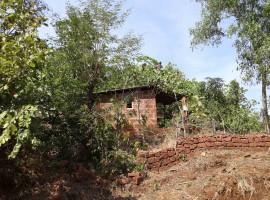 Cashew Farm in Kankadi, Tal Sangmeshwar, Dist Ratnagiri, Konkan 4 Acres