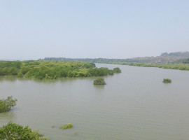 Sea View Land in Murdi, Dapoli, Dist Ratnagiri, Konkan 128 Guntha