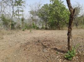 Agriculture Plot in Karambele, Tal Sangmeshwar, Dist Ratnagiri, Konkan 73 Guntha