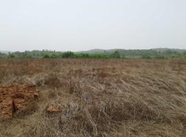 Agriculture land in Gavane Lanja, Dist Ratnagiri, Konkan 9 Acre