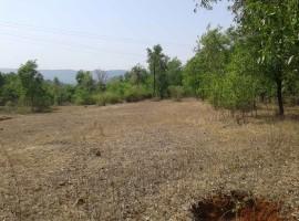 Agriculture land in Meghi, Tal Sangmeshwar, Dist Ratnagiri, Konkan 2 Acre