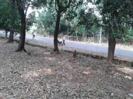 Agriculture Land in Tulsani, Tal Sangmeshwar, Dist Ratnagiri, Konkan 30 Guntha