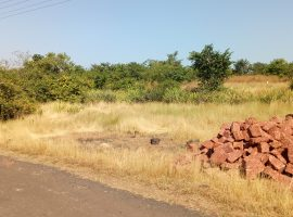 5 Guntha Land for Sale in Ratnagiri
