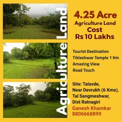 4.25 Acre Agriculture Land for Sale in Devrukh, Konkan