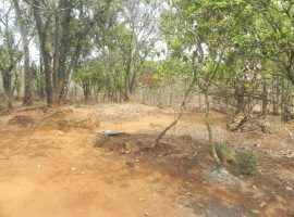 29 Guntha Plot For Sale in Konkan