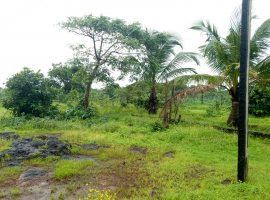 Sea View N.A Plot For Sale in Guhagar, Dist Ratnagiri, Konkan