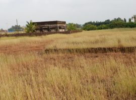 4.65 Guntha Plot For Sale in Kolembe, Dist Ratnagiri, Konkan